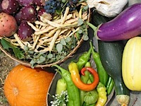 Colorful food_pw.JPG